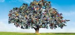 drvo od smeća